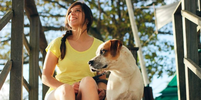 Hundekrankenversicherung: Vergleich von Anbietern